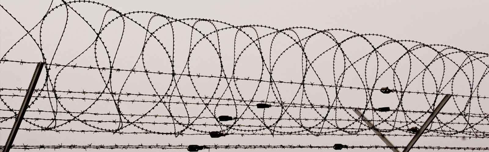 Concertina Wire manufacturer exporter supplier