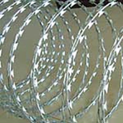 Concertina Wire In Chain Link Fencing