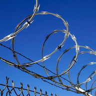 Razor Wire In Ganderbal