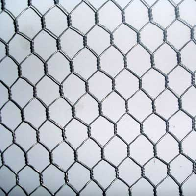 Wire Netting In Chain Link Fencing